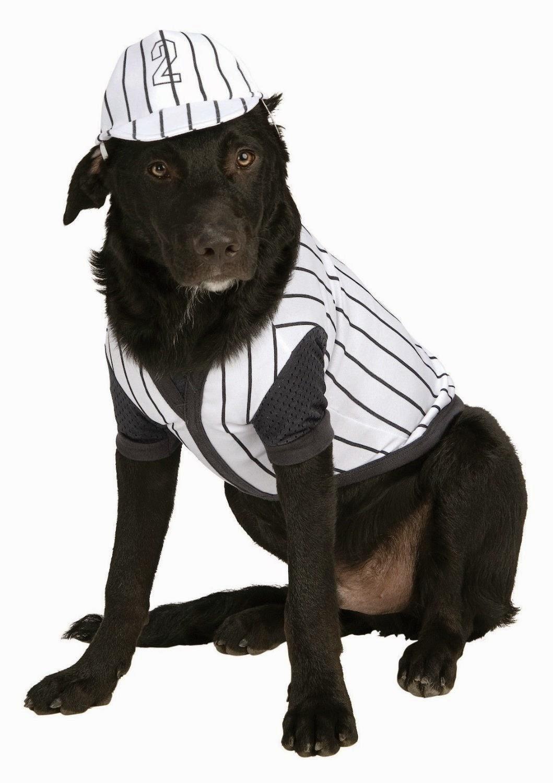 Halloween Baseball Costumes