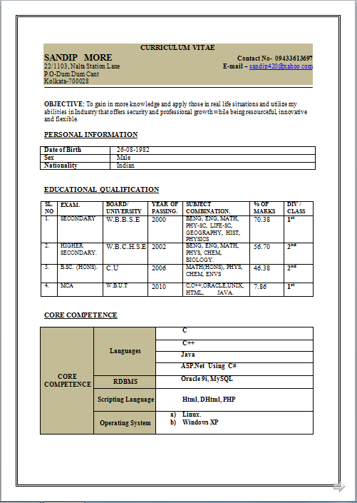 RESUME BLOG CO Resume Sample of MCA with Major subject of CC – Mca Resume Format