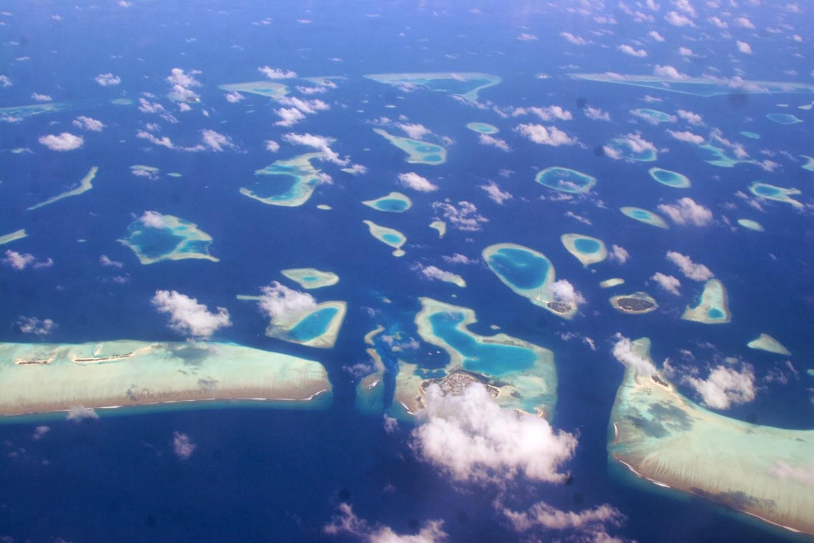 Volver para contarlo nadando con un tibur n ballena en el for Mejores islas de maldivas