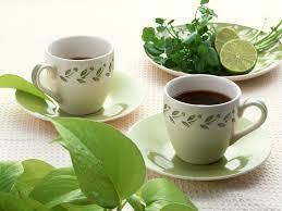 ¿Qué es el té verde?
