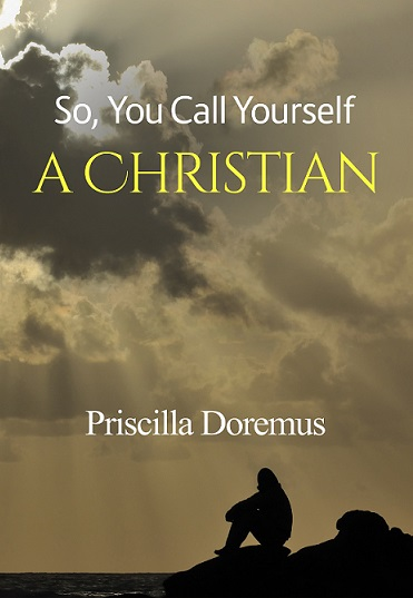 So, You Call Yourself A Christian