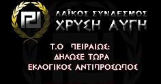 ΕΚΛΟΓΙΚΟΣ ΑΝΤΙΠΡΟΣΩΠΟΣ