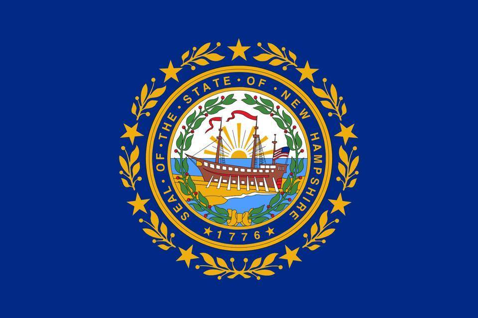 The New Hampshire Flag