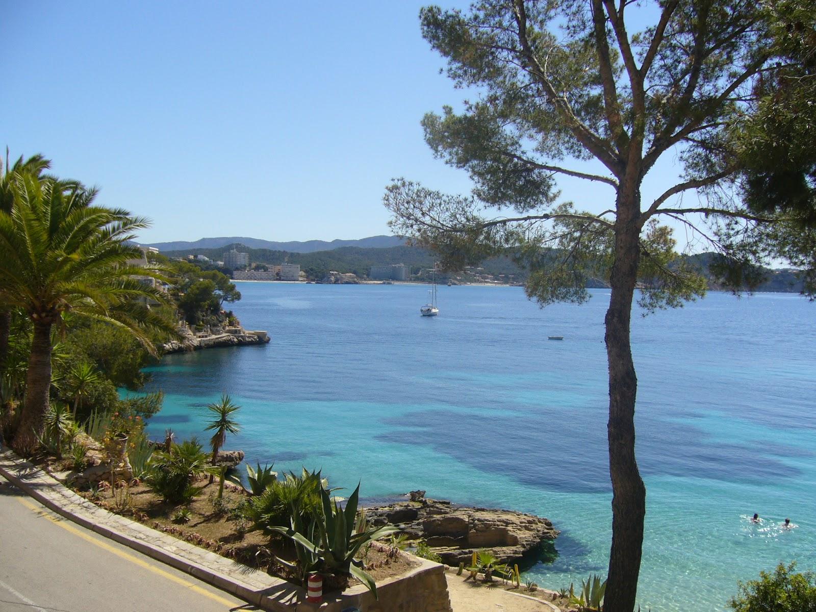 Mallorca Gutes Hotel Fur Junge Leute