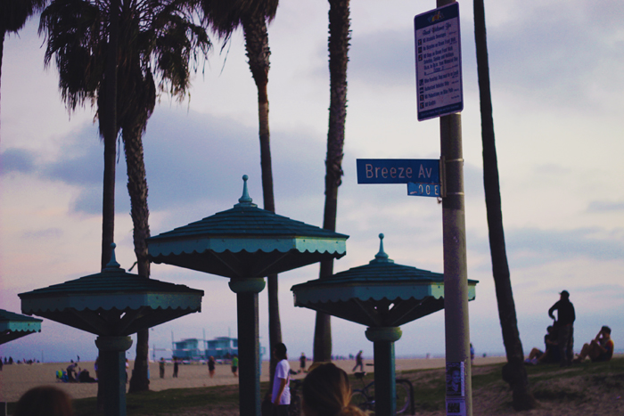 aimerose venice beach los angeles travel blog