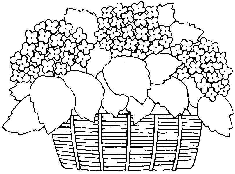 Riscos Para Pintura Em Tecido Cestas De Flores