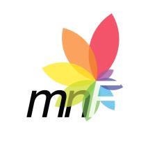 Mihai Nesu Foundation
