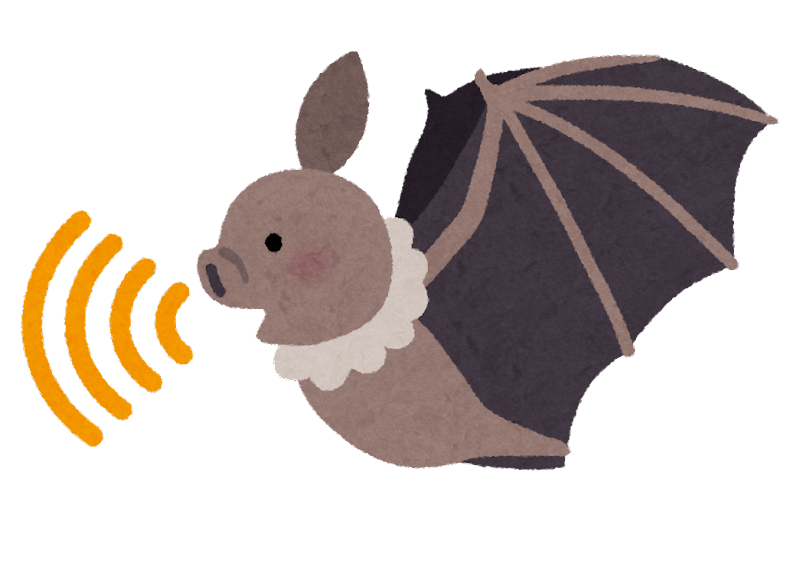 コウモリの画像 p1_11