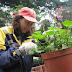 〈訪問園藝組深姐〉  新聞與傳播學院二年級 蔡悅君