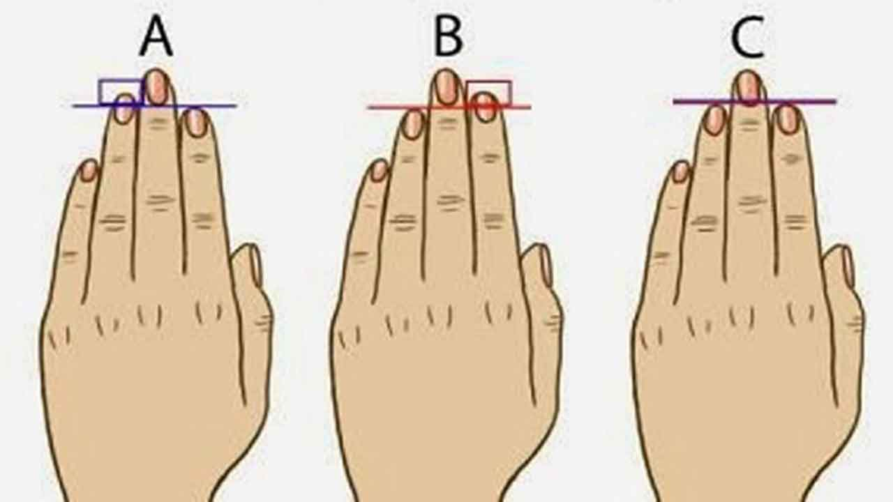 what finger length reveals about your personality life in saudi people all over the world often refer to many things to learn more about themselves some refer to horoscopes which take into account your birth period and