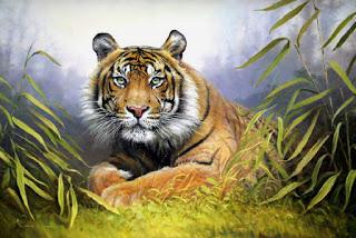 Hiperrealismo Pinturas Animales Salvajes