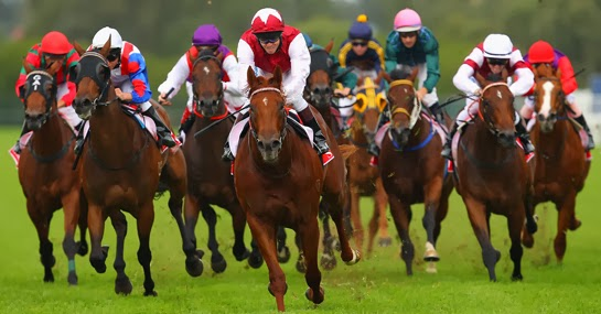 The Growth Trend in the Sportsbook Industry HorseRacingBettingExplainedBig