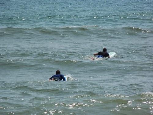 chơi lướt ván đà nẵng