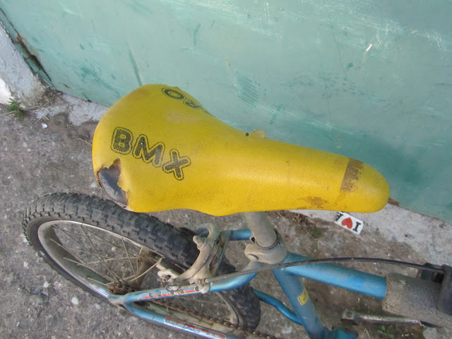 Team Looping   sillin Pro BMX