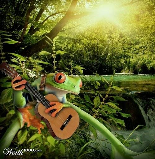 13-Frog-Star-Designer-&-Illustrator-Marcus-Aurelius-www-designstack-co