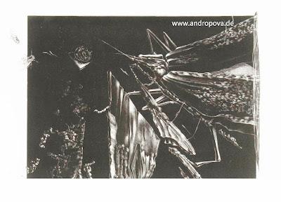 """Ereignishorizont"" - Schab-Lithografie, Fragment - Galerie Schab-Lithografie ᛝ www.andropova.de ᛝ"