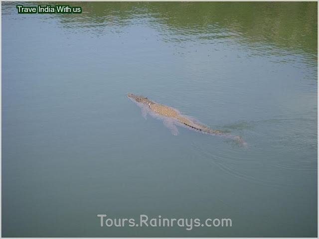 tourist attractions of india | tourist destination in india | tourist in india