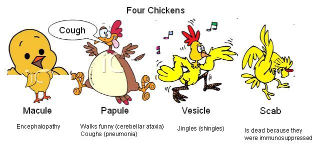 Symptoms of chicken pox in adults