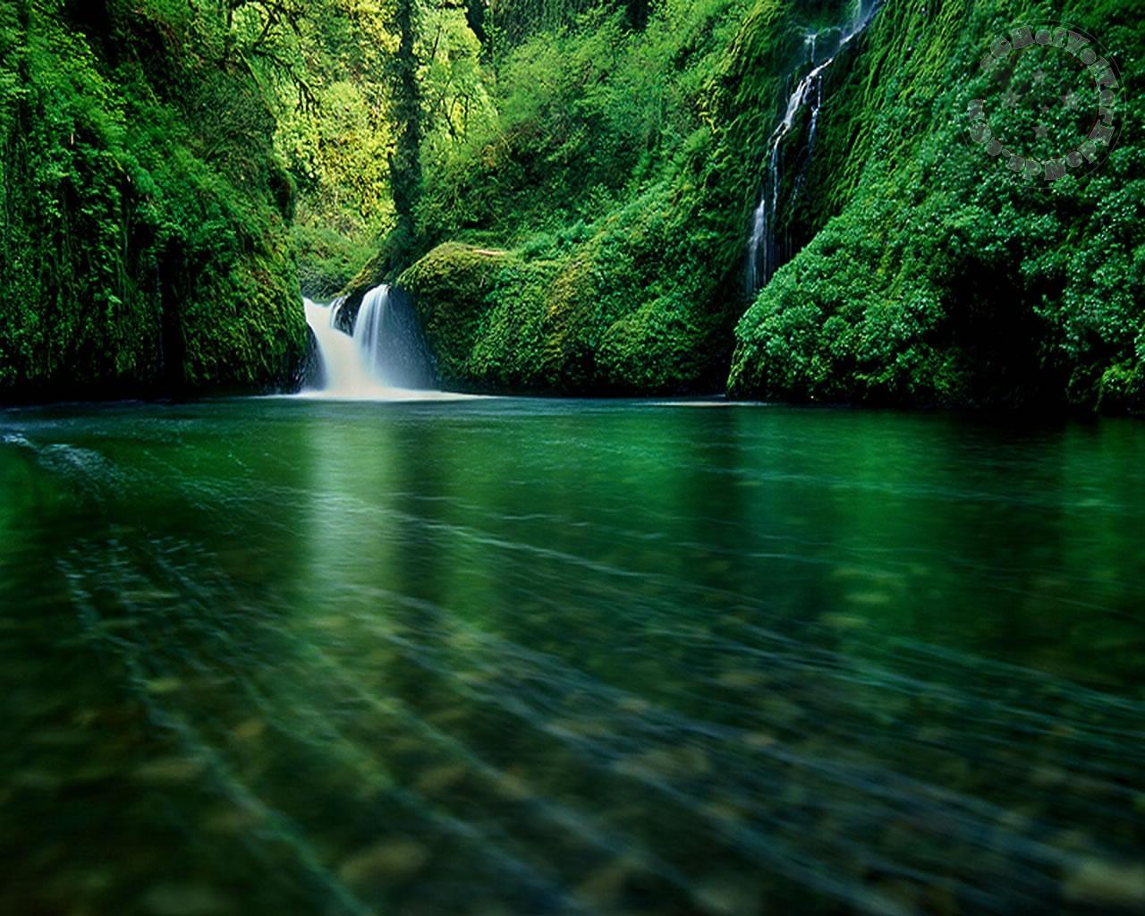 http://4.bp.blogspot.com/-VPxSGGEp9aA/TVcJp3uQMlI/AAAAAAAAABc/mJLk5V46ZSU/s1600/paisagem_001.jpg