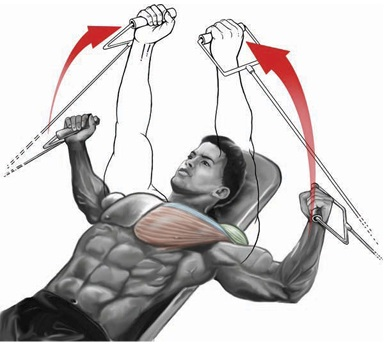 The Cable Lying Fly Is An Exercise That Targets Chest Muscles Specifically Inner Equipment Needed Bench Between A