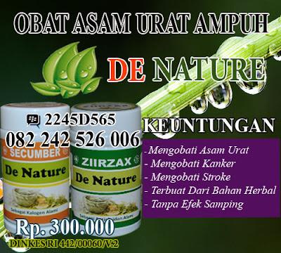 obat tradisional mujarab asam urat kronis