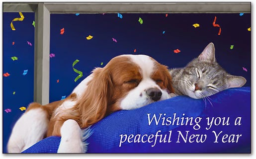 peaceful new year wishes