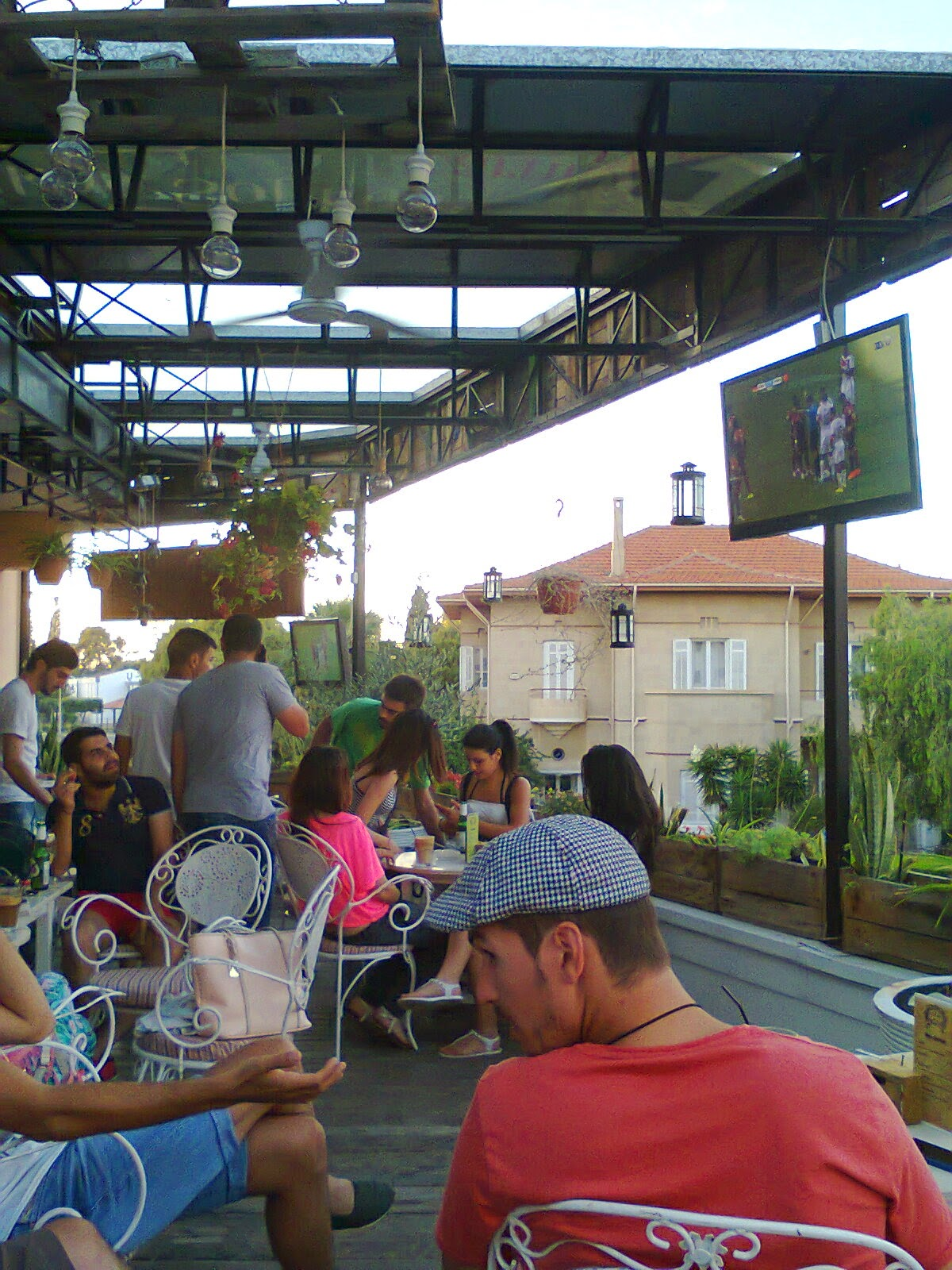 Travel cyprus with your dog more venues for watching the for Le jardin bar