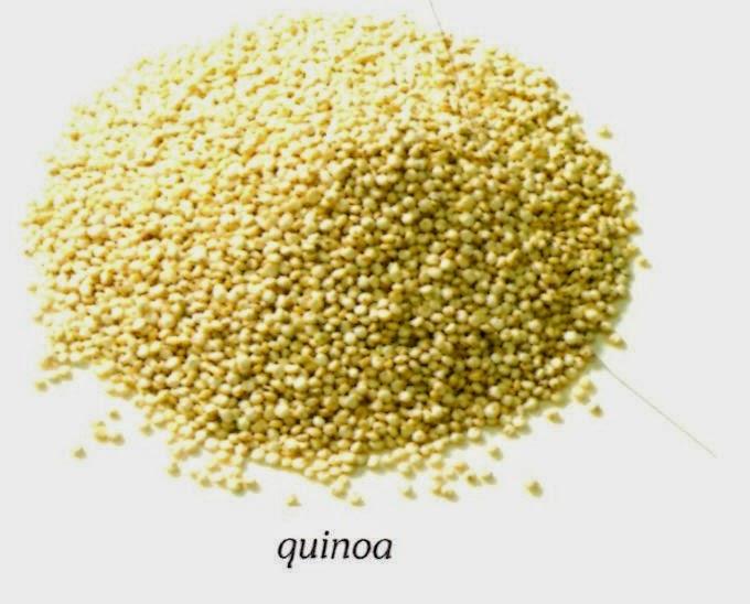 The wandering girl tout savoir sur les c r ales et les for Plante quinoa