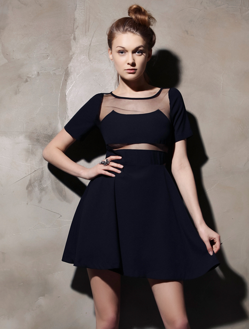 Mesh Insert Pure Beauty Dress