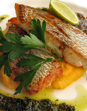 Scrumpdillyicious: Pan Roasted Snapper & Butternut Squash Purée