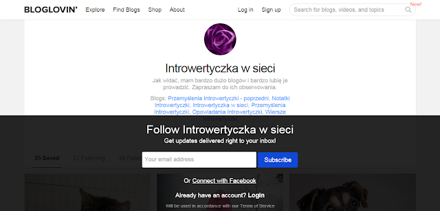 Mój profil na bloglovin