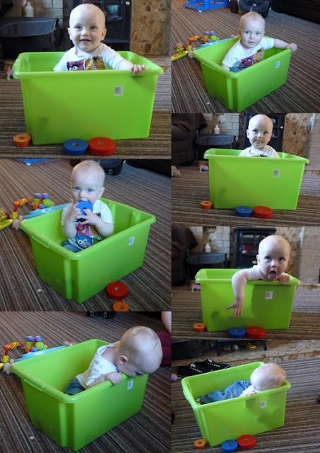 Whoopidooings: Fun with a box