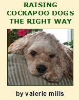 Raising Cockapoo Dogs