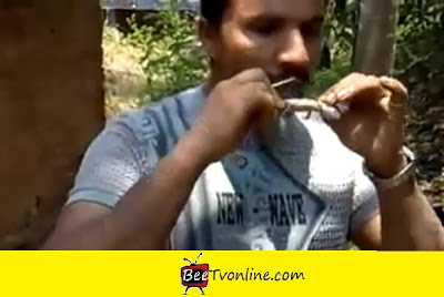 Man eating lizard
