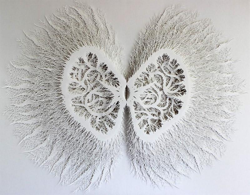 Buscando el Norte - El sitio de mi recreo: Intricate Organic Forms ...