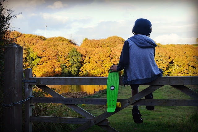 Plain Lazy Skateboard Review Retro Cruiser