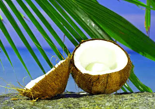 health_benefits_of_eating_coconut_fruits-vegetables-benefits.blogspot.com(9)