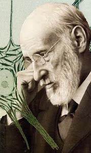 Santiago Ramón y Cajal, médico español: