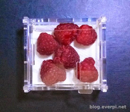 Case acrílico Raspberry Pi A+