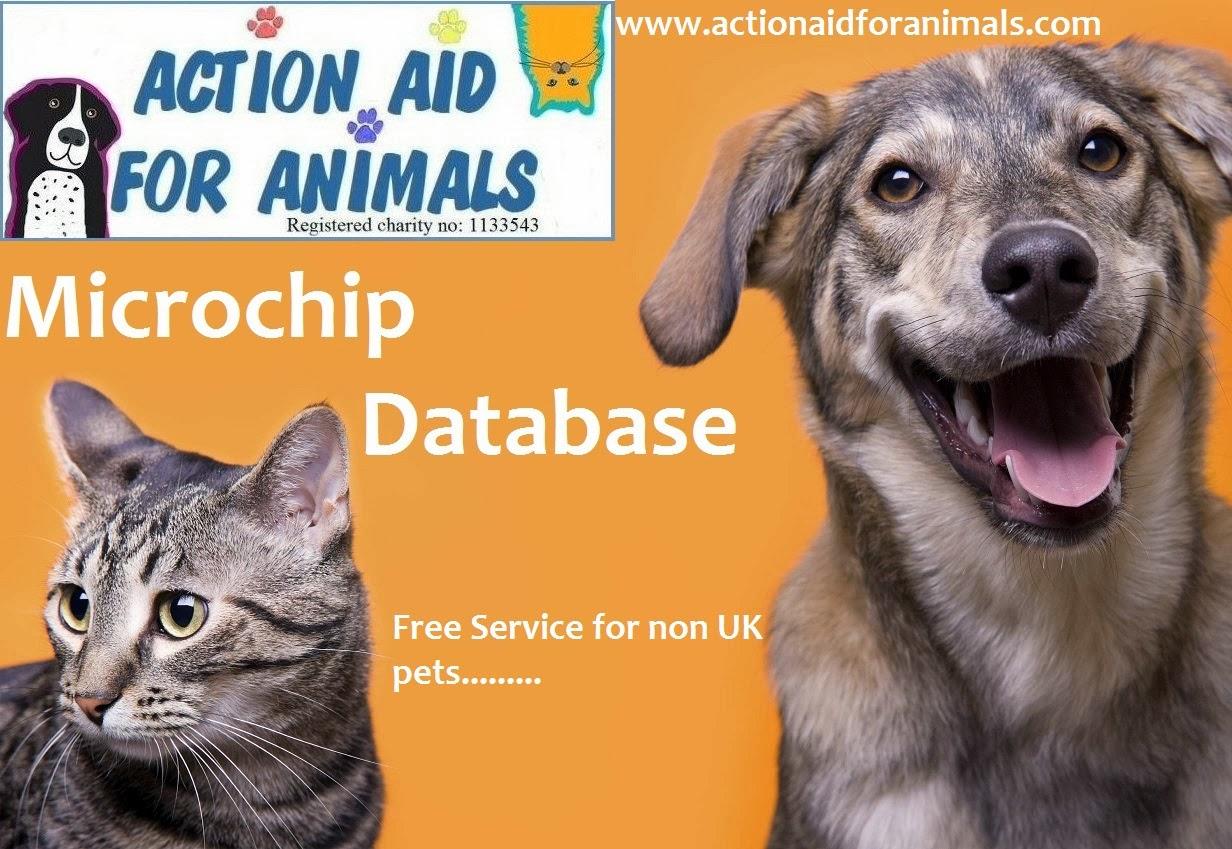 Register Foreign Dog Microchip In Uk Database