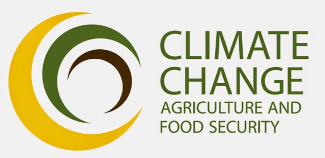CCAFS logo