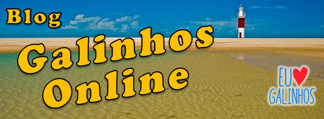 BLOG GALINHOS ONLINE