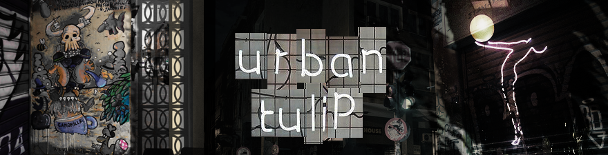 Urban Tulip