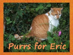 In memory of Eric of Adventures from Eric and Flynn