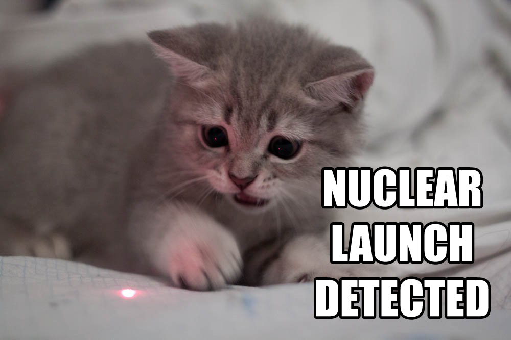 Nuclear Launch Detected - funny kitty cat