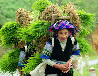 3 days tour exploring special Sapa with unique markets