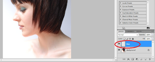 How To Change Hairs Color In Photoshop