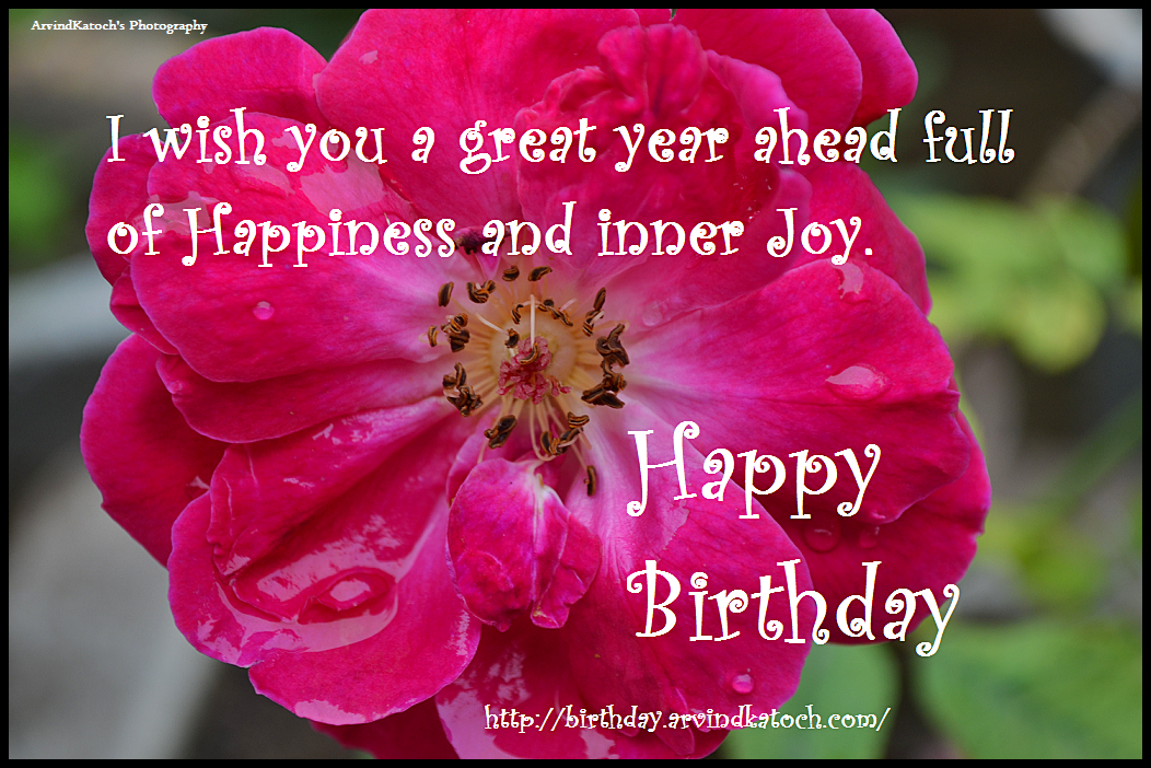 Great, year, happiness, happy birthday card,