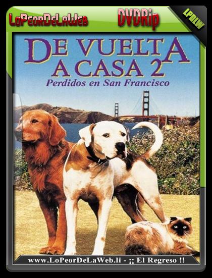 De Vuelta a Casa 2 (1996) DVDRip Latino