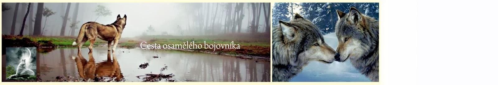 www.andele.info Libuše Švecová - Regresní terapi, konstelace, čištění podvědomí,semináře